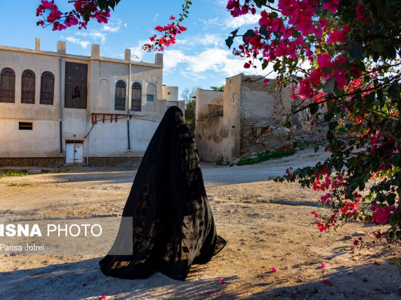 کوچه های صورتی رنگ بوشهر