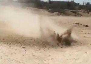 ماجرای جوشیدن عجیب خاک در بوشهر  چه بود؟