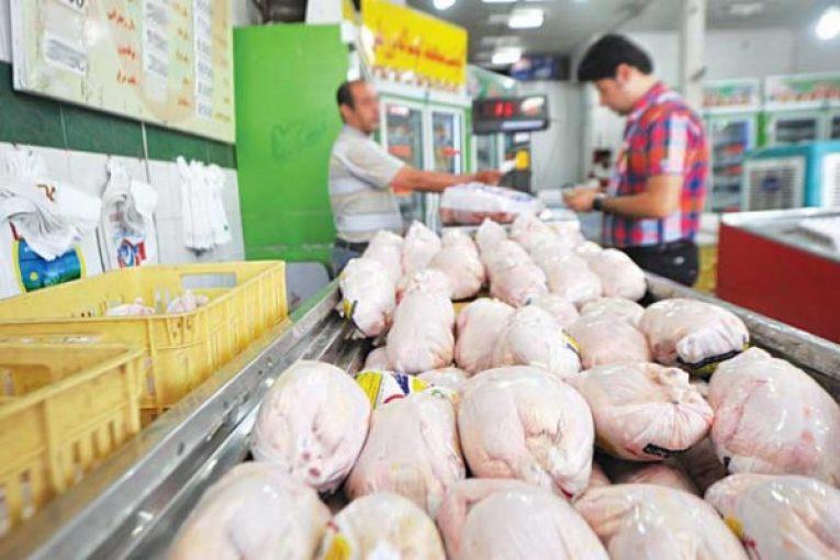مرغها در بوشهر به سمت دیگر استانها پر میکشند