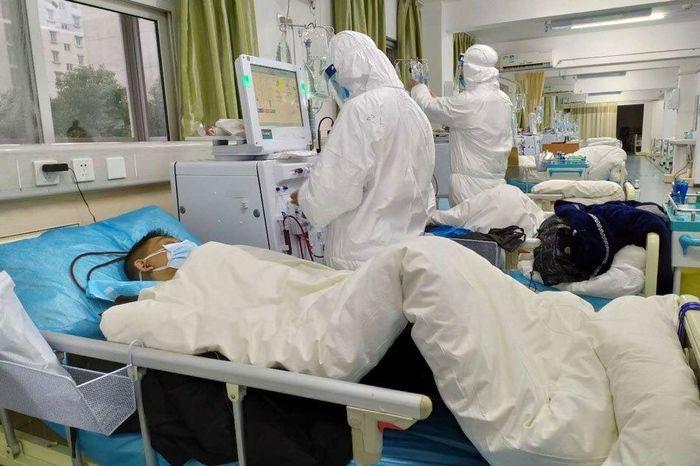 بوشهر امروز ۲۰۶ نفر مبتلای کرونایی داشت